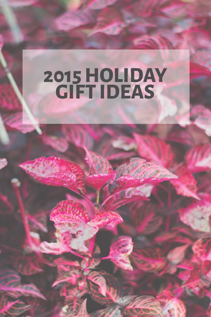 2015 Holiday Gift Ideas