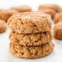 Square photo of some vegan oatmeal cookies
