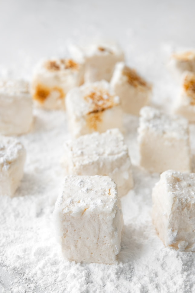 Photo of some toasted and regular vegan marshmallows